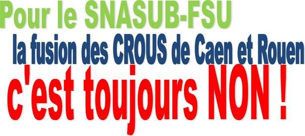 crous snasub fsu section acad mique caen. Black Bedroom Furniture Sets. Home Design Ideas
